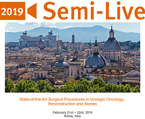 Semi-Live 2019:  State-of-the-Art Surgical Procedures in Urologic Oncology, Reconstruction and Stones