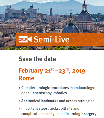 Semi-Live 2019:  State-of-the-Art Surgical Procedures in Urologic Oncology, Reconstruction and Stones- Rome, February 21st-23rd, 2019