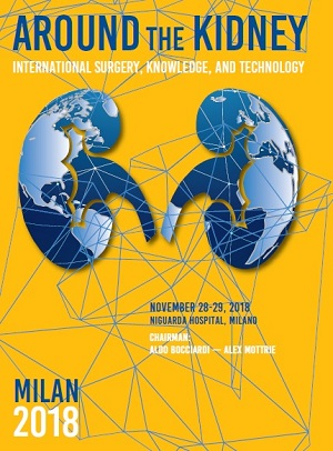 Around the kidney, Milan – Niguarda Hospital, November 28-29, 2018
