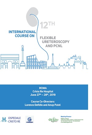 12th International Course on Flexible Ureteroscopy and PCNL,  Rome Cristo Re Hospital, June 27th-28th , 2019