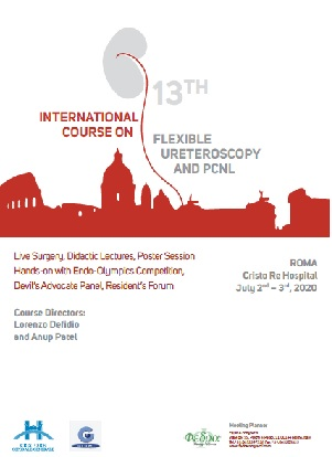 13th International Course on Flexible Ureteroscopy and PCNL, Rome, July 2nd&3rd 2020