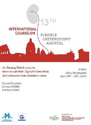 13th International Course on Flexible Ureteroscopy and PCNL