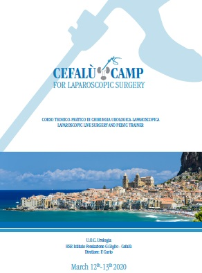 Cefalu Camp For Laparoscopic Surgery,Corso Teorico Pratico di Chirurgia Urologica-Lapoaroscopica, Laparoscopic Live Surgery and Pelvic Trainer, U.O.C. Urologia HSR Istituto Fondazione G.Giglio, Cefalu 12 -13 marzo 2020,